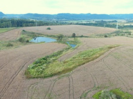 Área rural 70 ha com sede e lavoura
